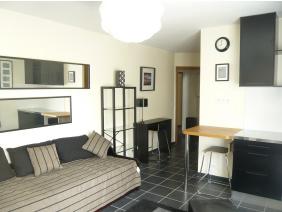 furnished apartement studio versailles Genet living room